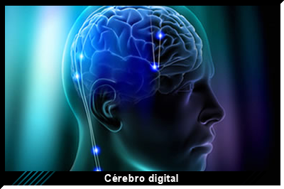 cerebro-digital